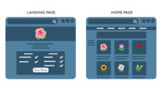 Landing page vs home page