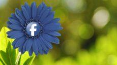 4 consigli da seguire per scegliere l'immagine perfetta per le inserzioni su Facebook