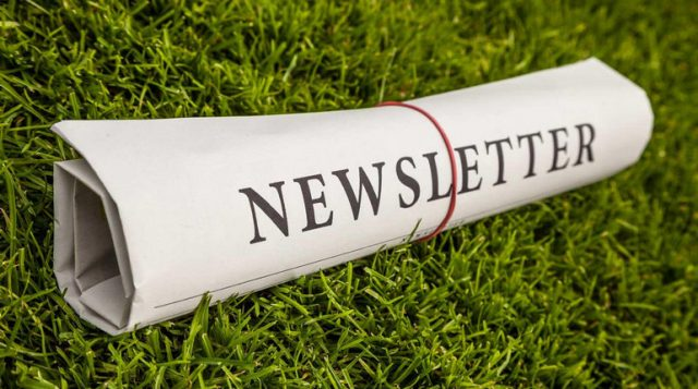 Benefici delle newsletter al digital marketing